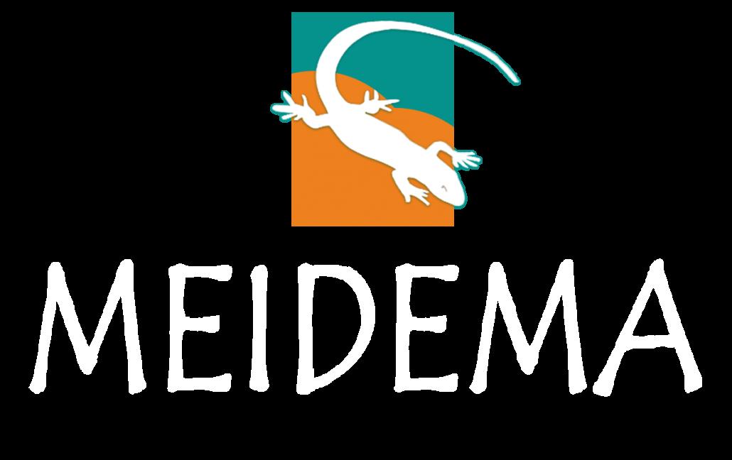 Meidema